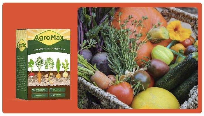 Agromax Какъв е съставът на продукта? Компоненти